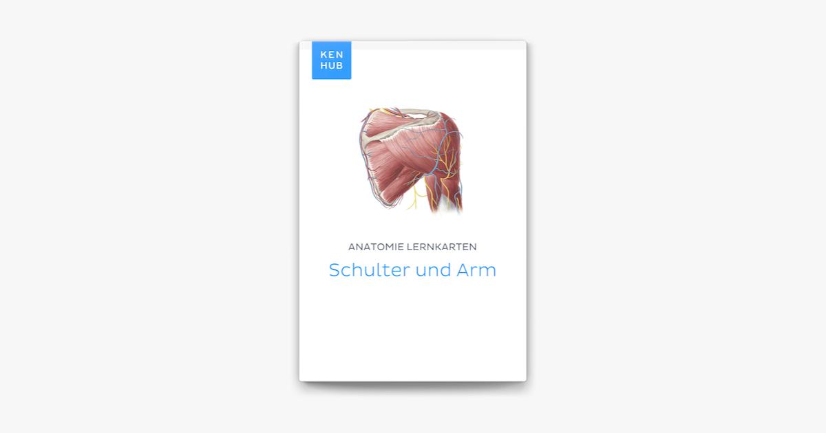 Anatomie Lernkarten: Schulter und Arm in Apple Books