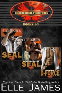 Brotherhood Protectors Vol 1 - Elle James pdf download