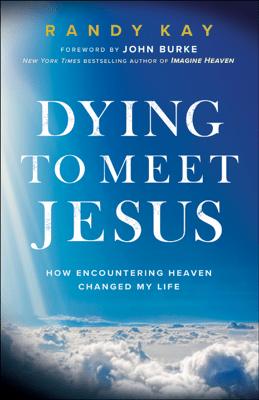 Dying to Meet Jesus - Randy Kay pdf download