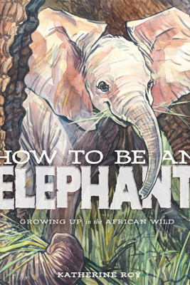 How to Be an Elephant - Katherine Roy