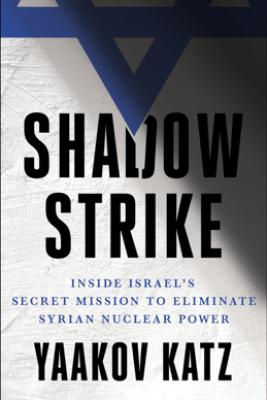 Shadow Strike - Yaakov Katz