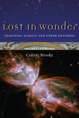 Lost in Wonder - Colette Brooks