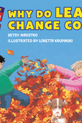 Why Do Leaves Change Color? - Betsy Maestro