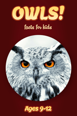 Owl Facts For Kids 9-12 - Cindy Bowdoin