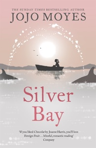 Silver Bay - Jojo Moyes pdf download