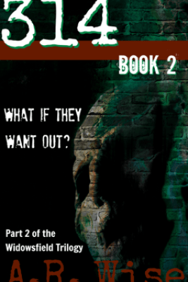 314 Book 2 - A.R. Wise