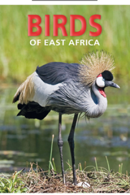 Pocket Guide to Birds of East Africa - Dave Richards