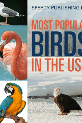 Most Popular Birds In The USA - Speedy Publishing