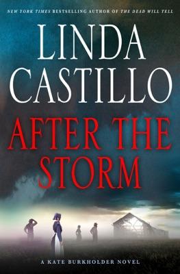 After the Storm - Linda Castillo pdf download