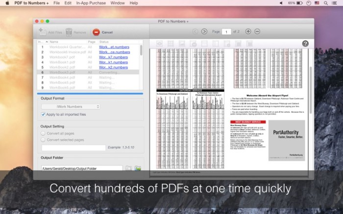 PDF to Numbers + Screenshot 05 xozmsn