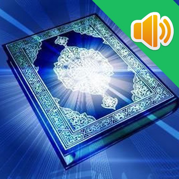 Chinese Quran Audio Book