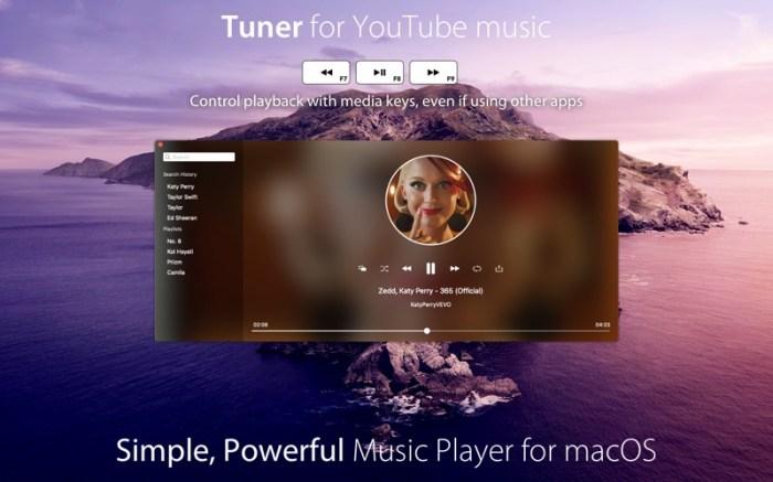 Tuner for YouTube music Screenshot 01 1353w1n