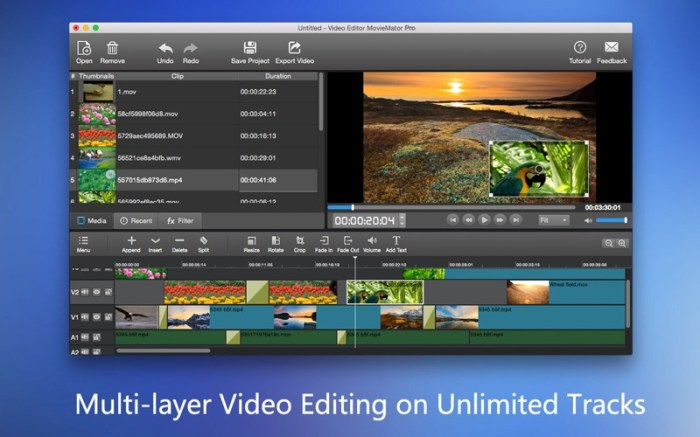 MovieMator Video Editor Pro Screenshot 02 rrts6cn