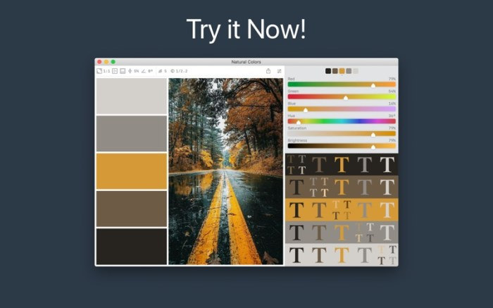 Color Palette from Image Screenshot 5 136z45n