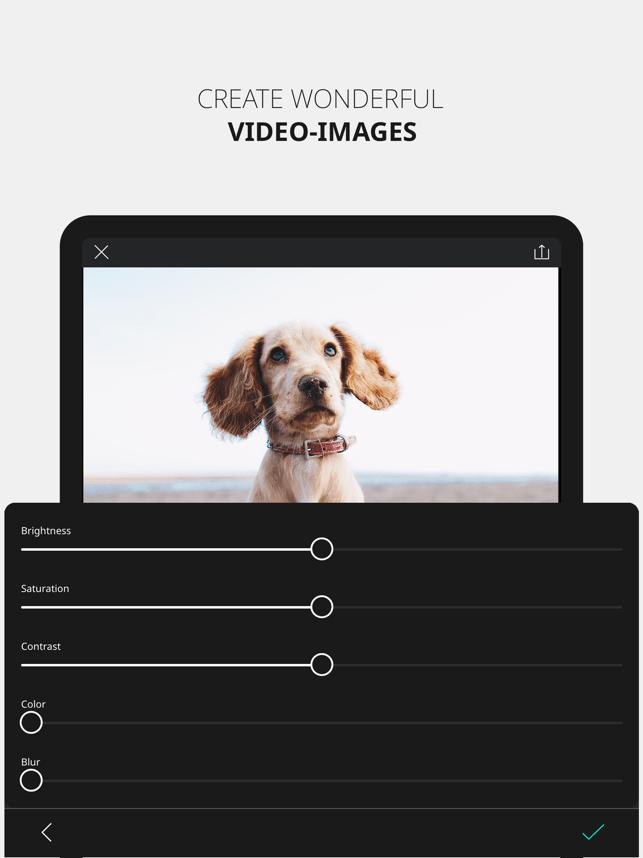 VIMAGE Cinemagraph FX Overlay Screenshot