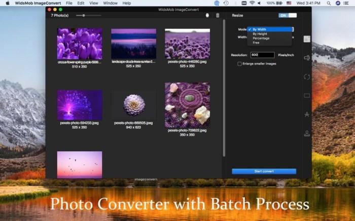 WidsMob ImageConvert-JPG/PNG Screenshot 01 9wg6z1n