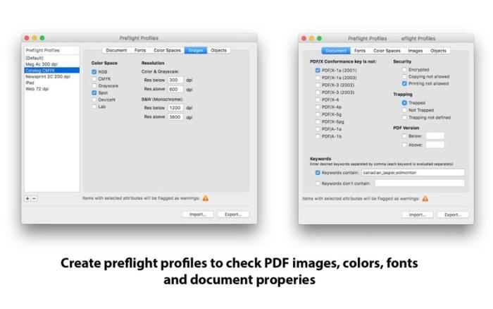 3_PDF_Checkpoint.jpg