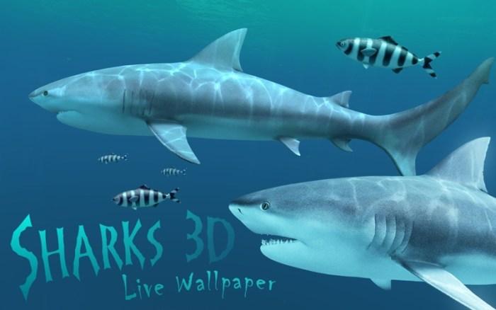 1_Sharks_3D.jpg
