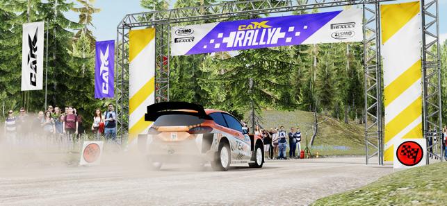 CarX Rally Screenshot