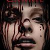Carrie (2013) - Kimberly Peirce