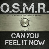 Old Southern Moonshine Revival - Can You Feel It Now - EP  artwork