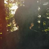 Jon Darling - High Forest  artwork
