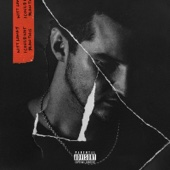 Witt Lowry - I Could Not Plan This  artwork