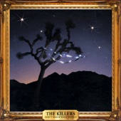 Don't Waste Your Wishes - The Killers Cover Art