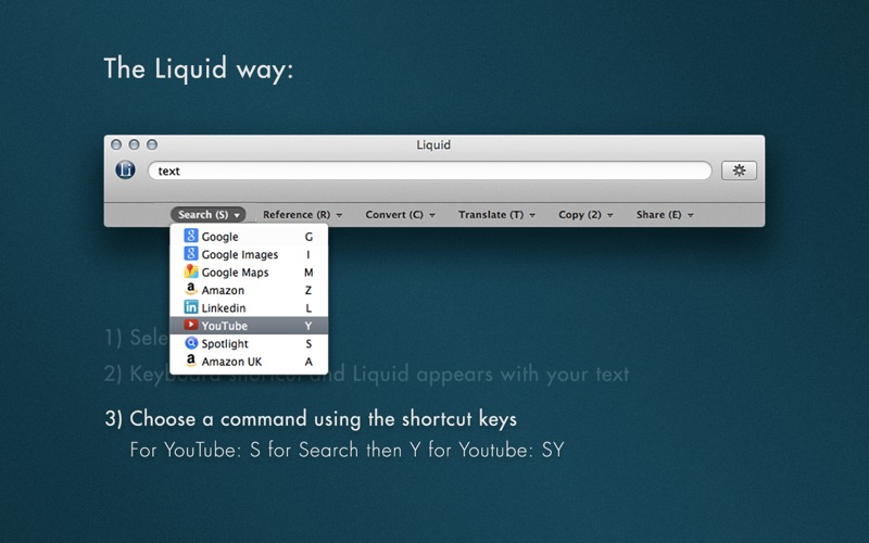 Liquid for Mac 14 破解版 - 信息快速检索工具
