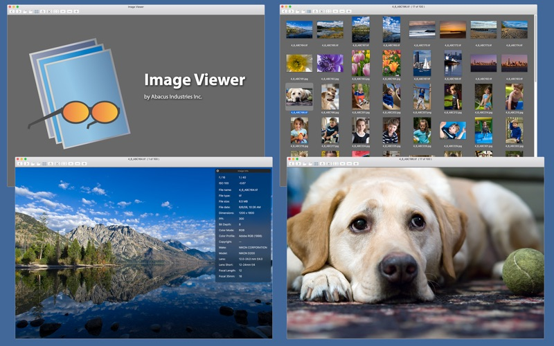 Image Viewer 2.1 patch for mac