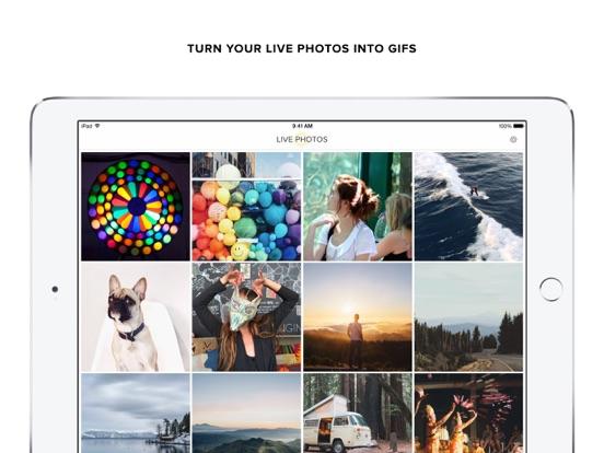 Live GIF — Turn Live Photos into GIFs Screenshot