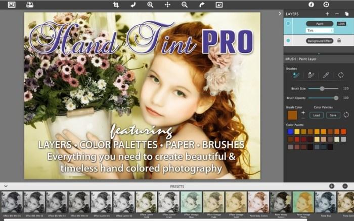 1_Hand_Tint_Pro.jpg