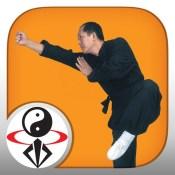 Shaolin Kung Fu Fundamental Training