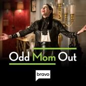 Odd Mom Out - Odd Mom Out, Season 3  artwork