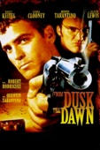Unknown - From Dusk Till Dawn  artwork