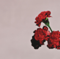 Free Download John Legend All of Me Mp3