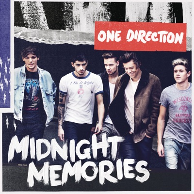 Story Of My Life - One Direction mp3 download