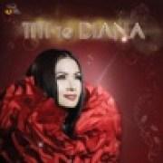 download lagu Titi DJ Jangan Biarkan (feat. Diana Nasution)