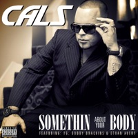 Somethin About Your Body (feat. Yg, Bobby Brackins & Ethan Avery) - Single - Cals mp3 download