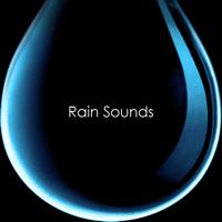 Calming Night-Time Rain Sounds Nature Sounds