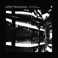 Away With Me (feat. Tamara Blessa) [Calibre Remix] SpectraSoul