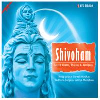 Hey Natrajan Antaryami Anup Jalota MP3