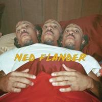 NY (Ned Flander) [feat. Hodgy Beats & Tyler, the Creator] - Single - Odd Future mp3 download