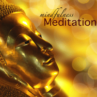 Calm & Peace Meditation Guru MP3