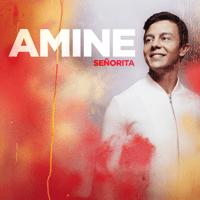 Señorita Amine MP3