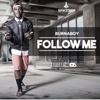 Follow Me - Single - Burna Boy mp3 download