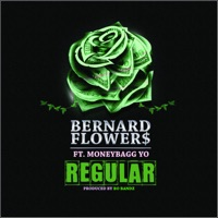 Regular (feat. Moneybagg Yo) - Single - Bernard Flowers mp3 download