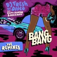 Bang Bang (feat. R. City, Selah Sue & Craig David) [Remixes] - Single - DJ Fresh & Diplo mp3 download
