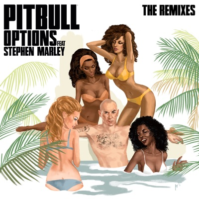 Options [Chuckie Remix] - Pitbull Feat. Stephen Marley mp3 download