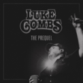 Free Download Luke Combs Beer Never Broke My Heart Mp3
